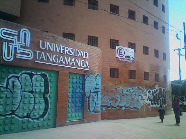 Algunas instituciones son víctimas del vandalismo a causa de los grafitis, lo que causa mal aspecto a los centros educativos.