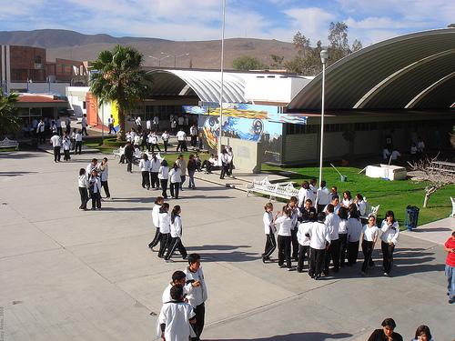 Regresan a trabajar 2,000 trabajadores del  COBACH