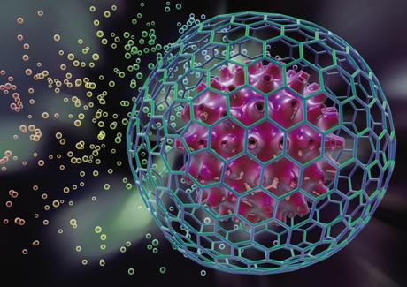 El futuro para tratar enfermedades esta en las células madre