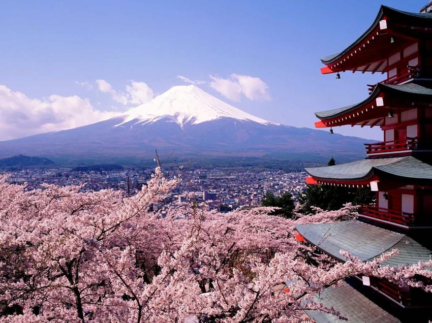 SEGE invita a participar en programas de becas en Japó