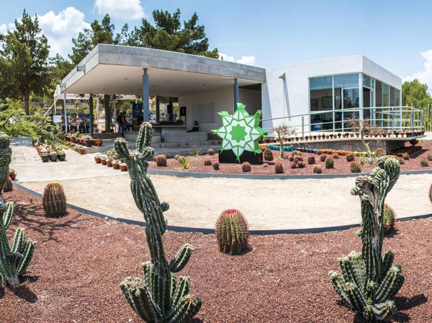 "UASLP inauguró el Jardín Botánico ""El Izotal"" dentro del Tangamanga 1"