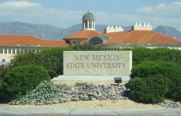 Podría instalarse en SLP la primera universidad estadounidense