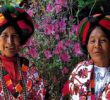 Maestro potosino elabora medidas preventivas contra COVID-19 en náhuatl